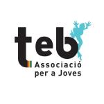Teb Youth Association